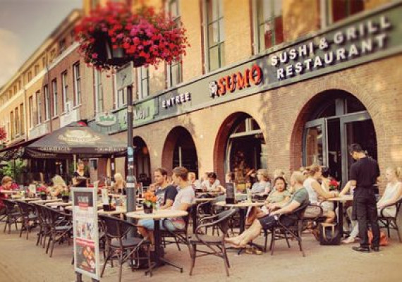 Sumo-HCN-Arnhem.jpg